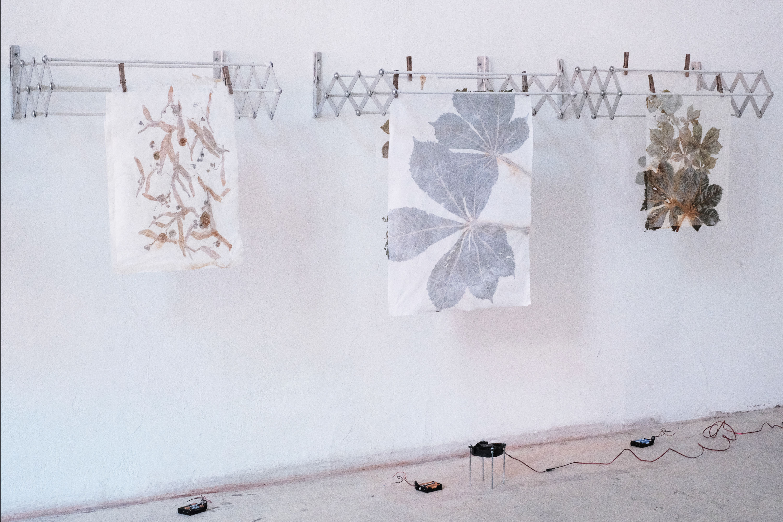 Ausstellungsansicht, Intersections #2, Roland Maurmair, Galerie Kunstbüro, 2018