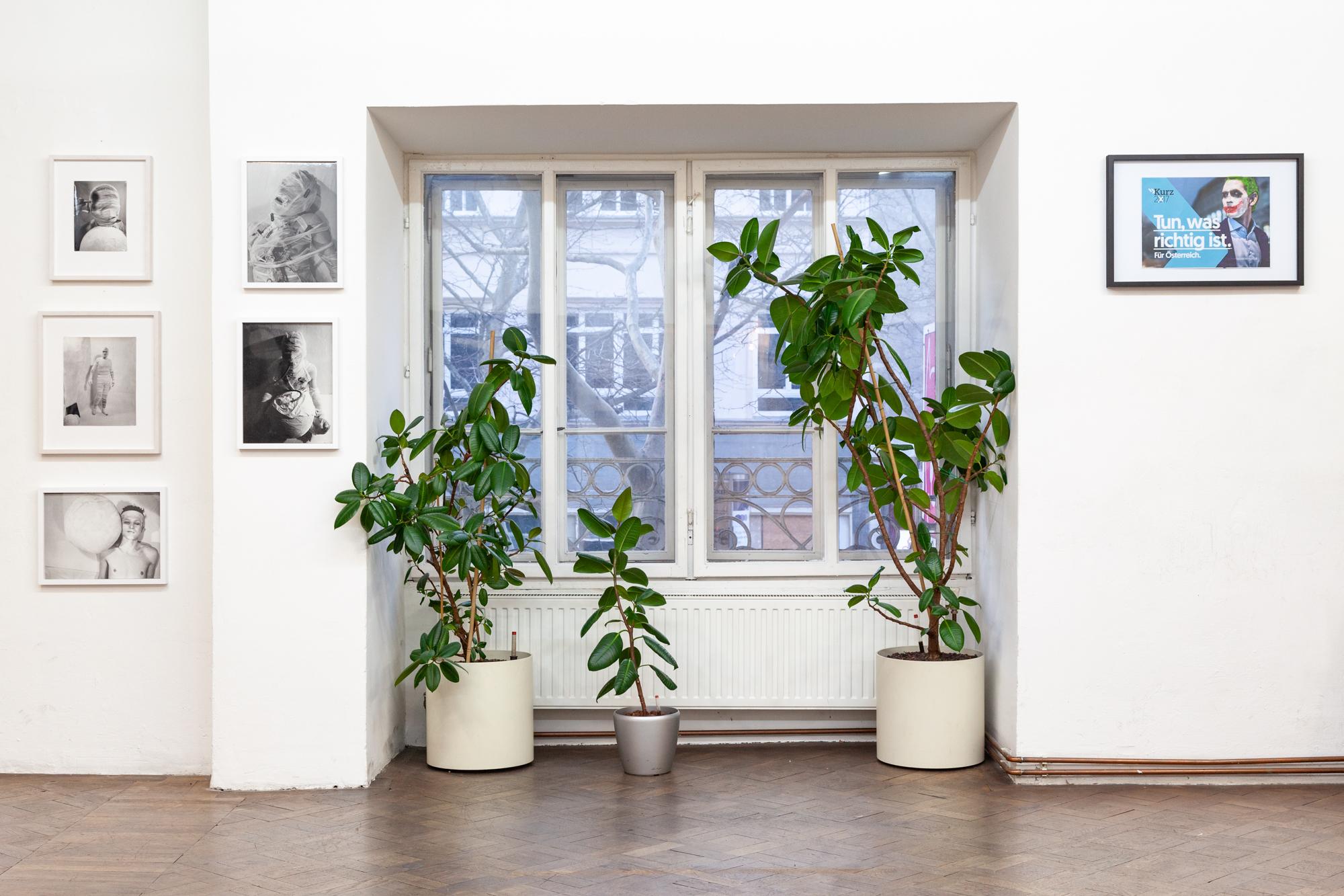 Installationsansicht Rudolf Schwarzkogler und Martin Grandits