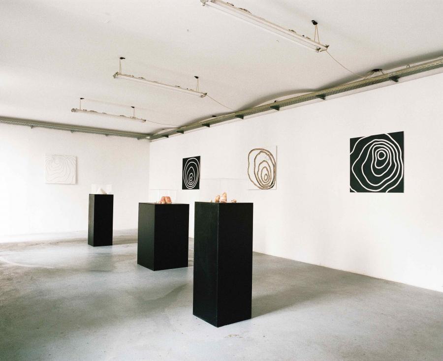 Ausstellungansicht MORITZ M. POLANSKY, Kunstraum am Schauplatz, 2017