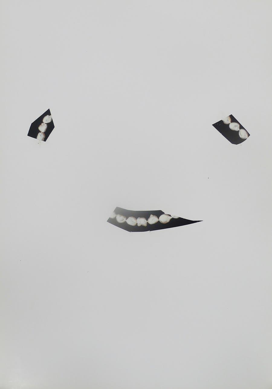 Christine Kofler, Edition Studio Mühlgasse, 2013, 30 x 20 cm, 12/15