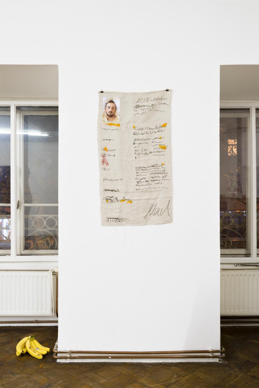 "Installationview, ""Josip Novosel - CV Paintings"", Büro Weltausstellung, 2017. Untitled CV, Öl, Textilfarbe, C-Print auf Leinen, 97 x 53 cm, 2016–17"
