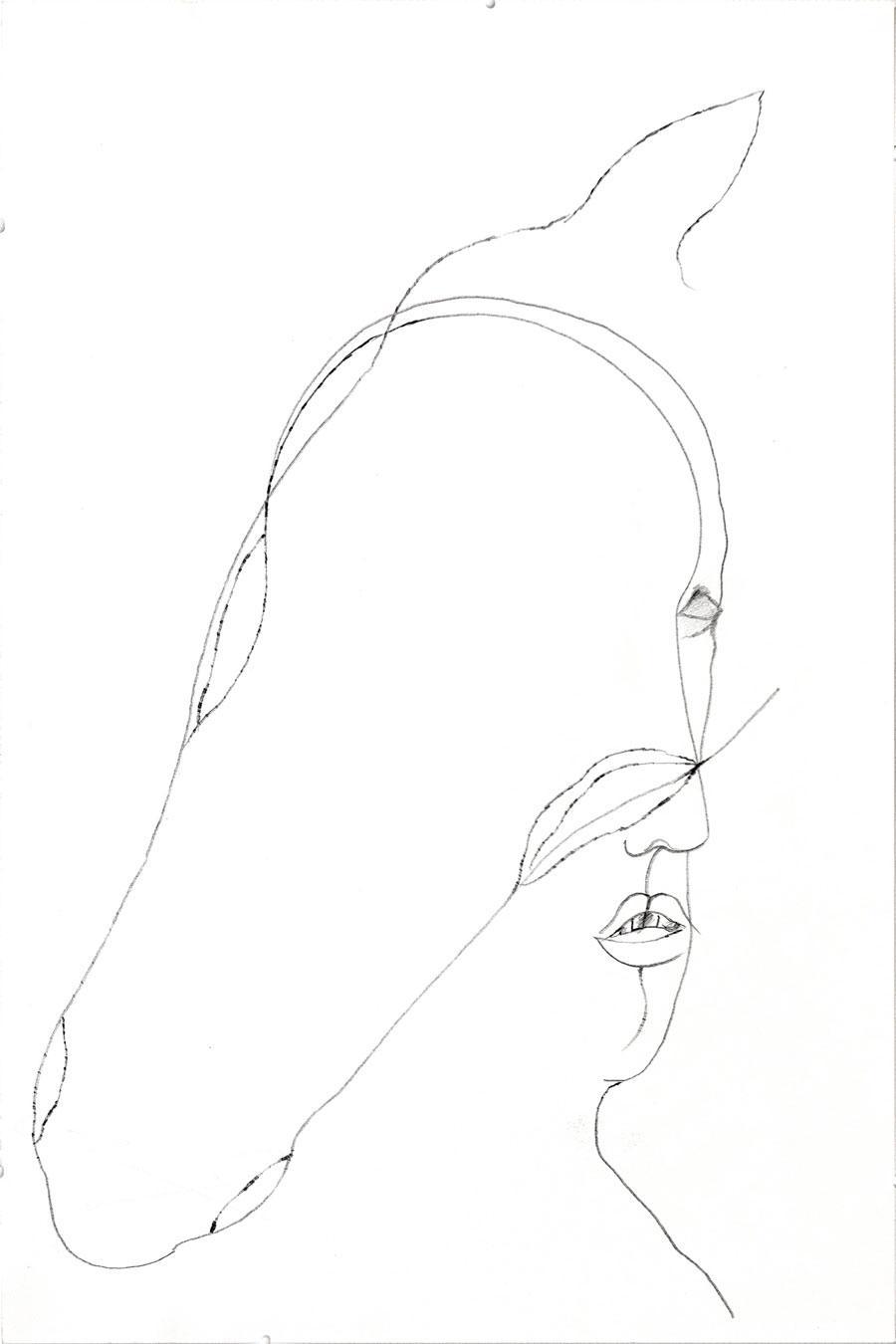 """""""FRAUENKOPF – PFERDEKOPF"""", 46 x 30 cm, Bleistift auf Papier"""